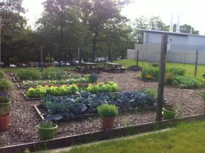 Lehigh College of Education - Rodale Organic Garden