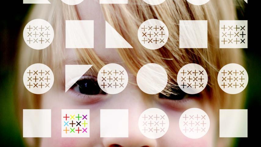 A Mathematical Enigma